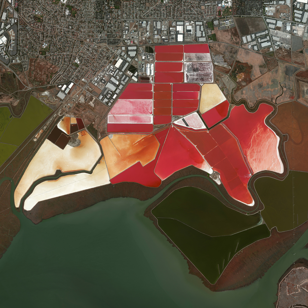 3/15/2016   Salt Evaporation Ponds   San Francisco, California, USA  37.504215, -122.036887     This Overview captures salt evaporation ponds in San Francisco, California, USA. Here, water is channeled into these massive basins where it begins a transformation into brines. Over five years, the brines evaporate, concentrate, and travel several miles before they are collected as pure salt crystals. The massive ponds get their vibrant red colors from algae Dunaliella, a particular species of algae that thrives in extremely salty water.