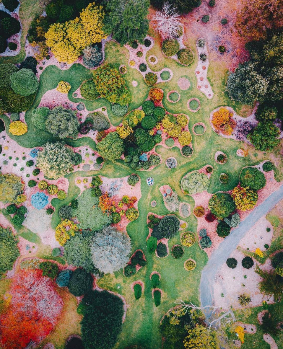 5/6/2017 Botanical Garden Australia -34.988504, 138.718630 Check out this awesome drone shot of the Botanical Garden in Mount Lofty, Australia! The garden is situated on 240 acres on the eastern slopes of Mount Lofty in the Adelaide Hills. The garden includes plants from all around the globe, including South America, China, East Africa, New Zealand, South East Asia and North America. Found on: From Where I Drone Photo by: Bo Le
