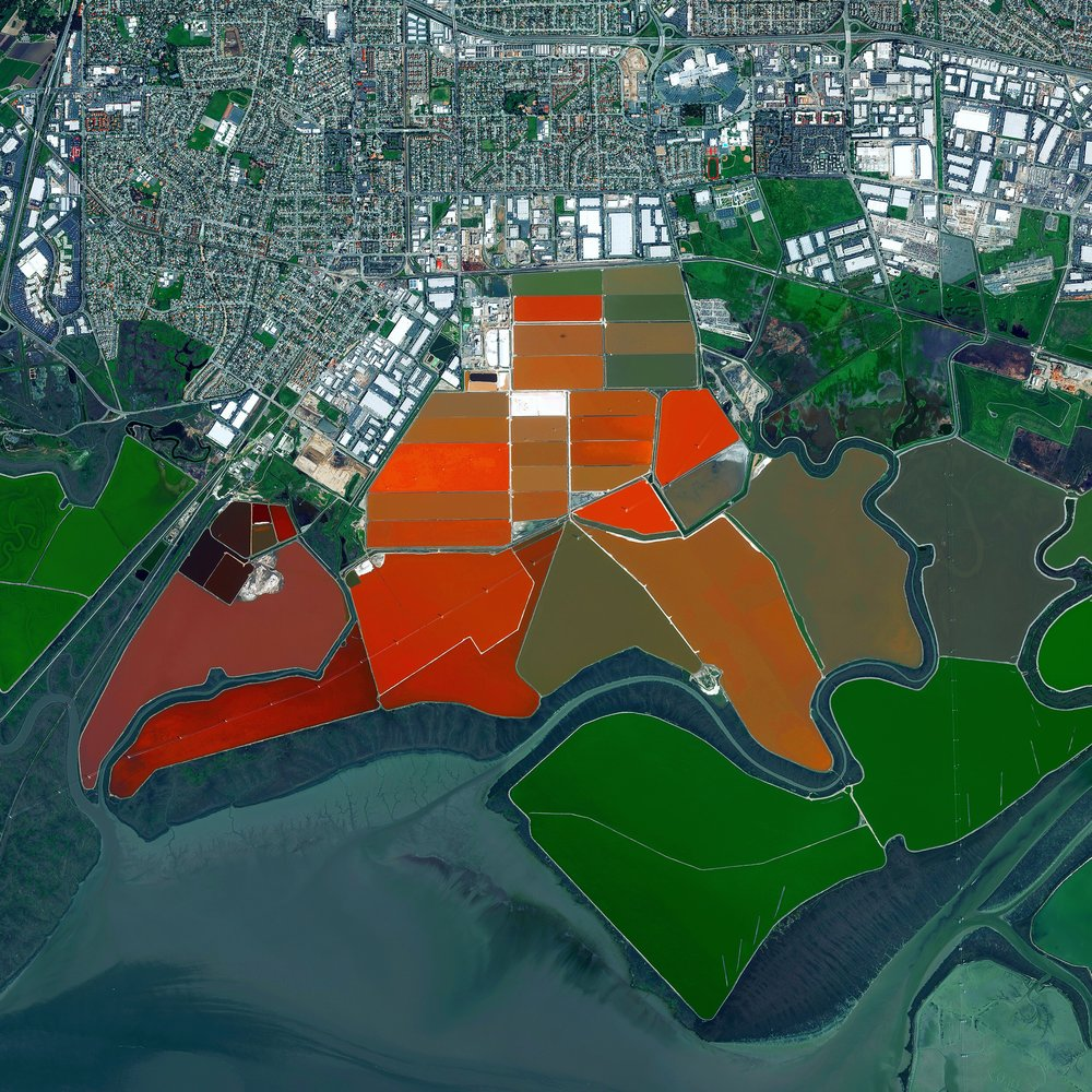 Salt ponds are seen on San Francisco Bay in northern California, USA. Here water is channelled into large ponds and exits through natural evaporation. The salt that remains can then be collected. The massive ponds get their vibrant reddish colors from the algae that thrive in the extremely salty water. Approximately 80% of this wetlands area – approximately 16,500 acres – has been developed for salt mining.   37.504215°,  –122.036887°  Source imagery: DigitalGlobe