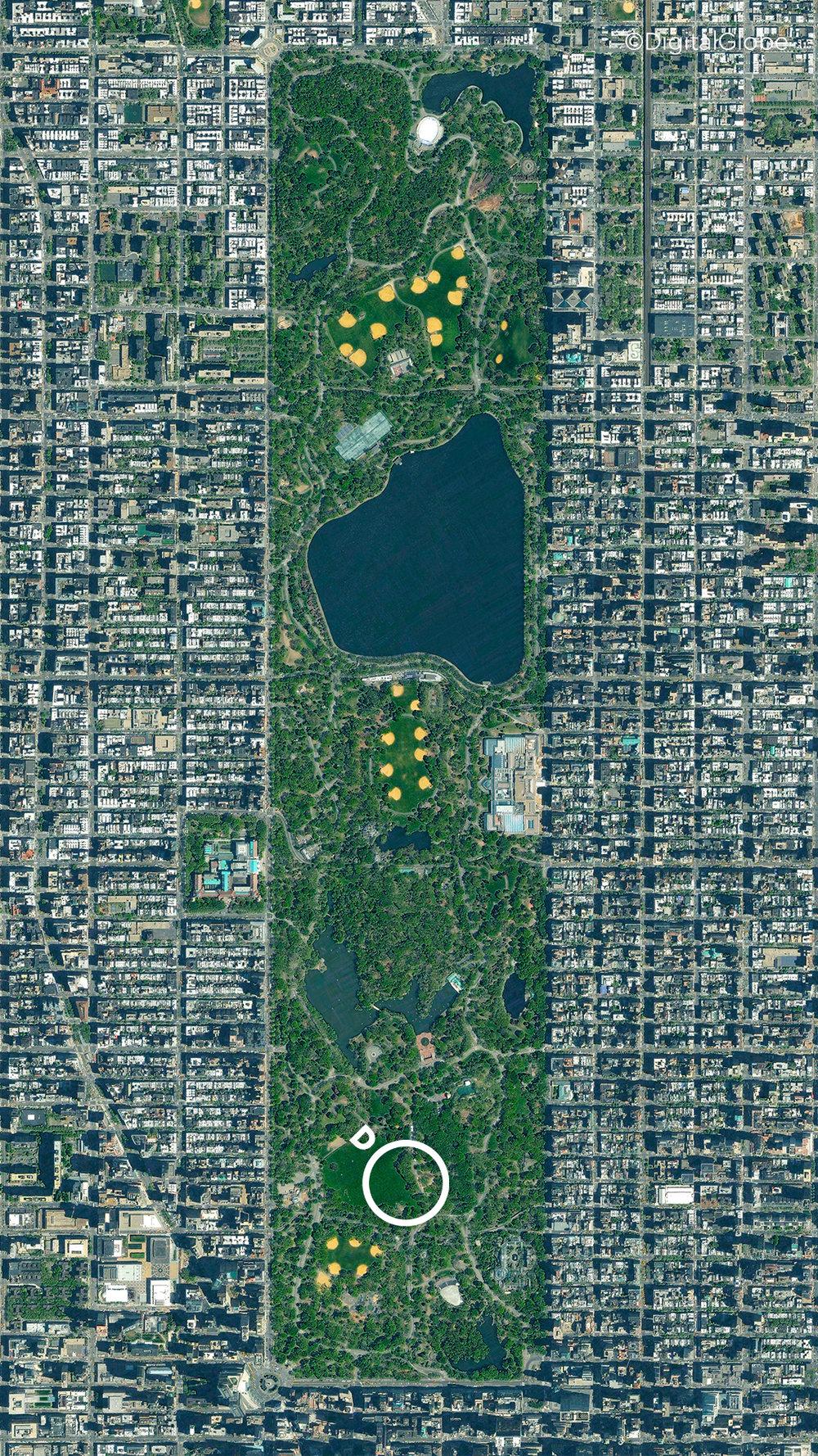 Central Park.jpg