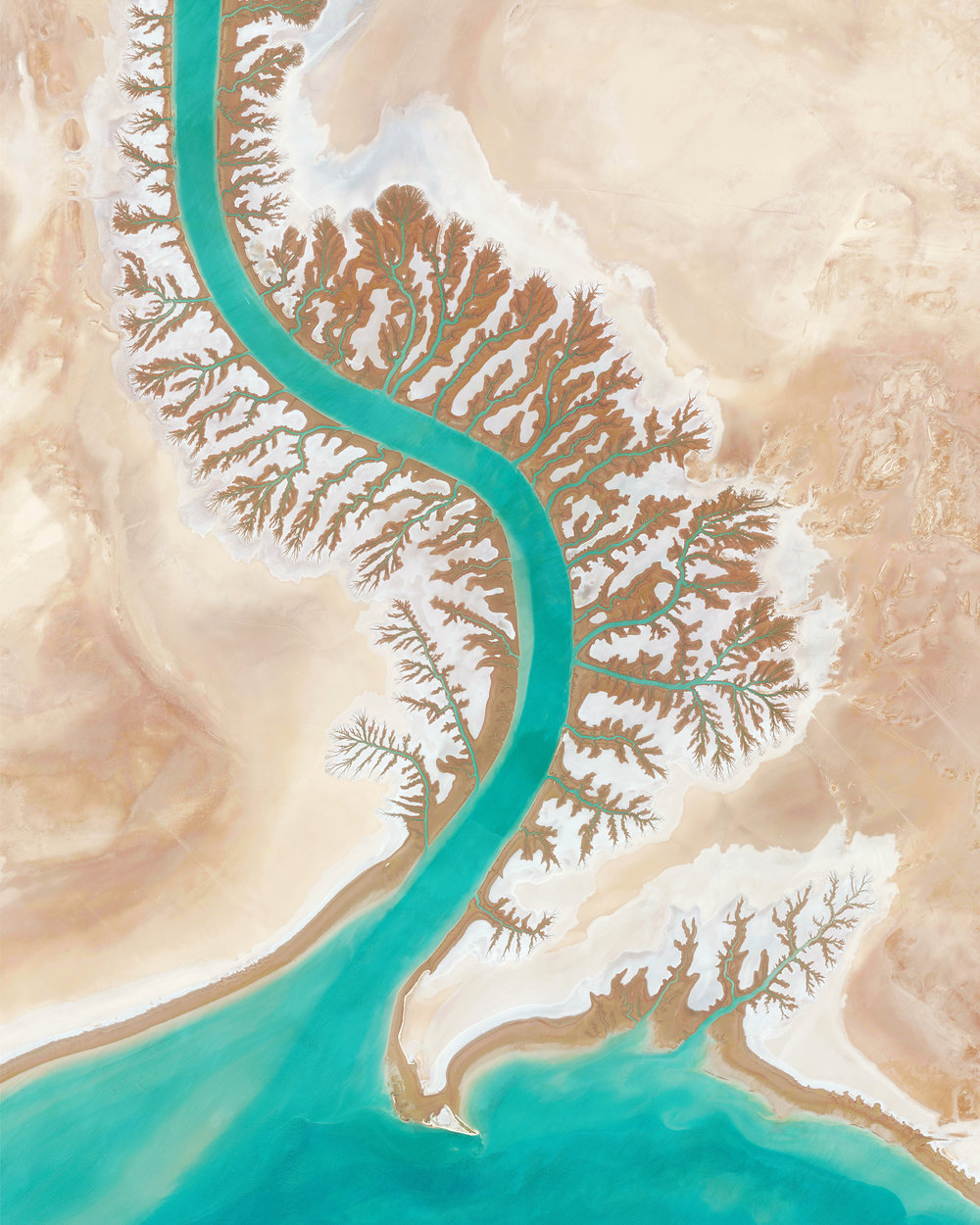 "Dendritic drainage systems are seen around the Shadegan Lagoon by Musa Bay in Iran. The word 'dendritic' refers to the pools' resemblance to the branches of a tree, and this pattern develops when streams move across relatively flat and uniform rocks, or over a surface that resists erosion.  30°27'24.3""N 48°55'46.0""E  Source imagery: DigitalGlobe"