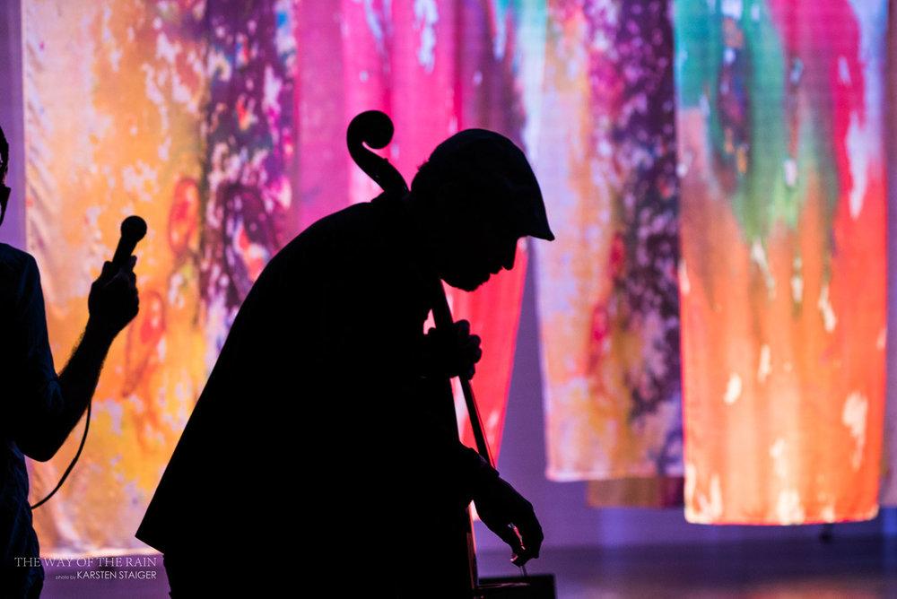 MUSICIAN | Dave Eggar