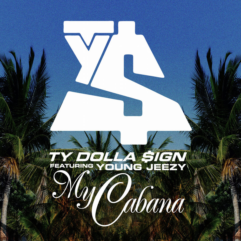 So How Many Hoes Can Actually Fit in Ty$' Cabana?: A Mathematical Equation