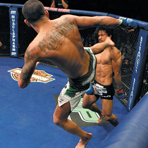 UFC 164 Preview