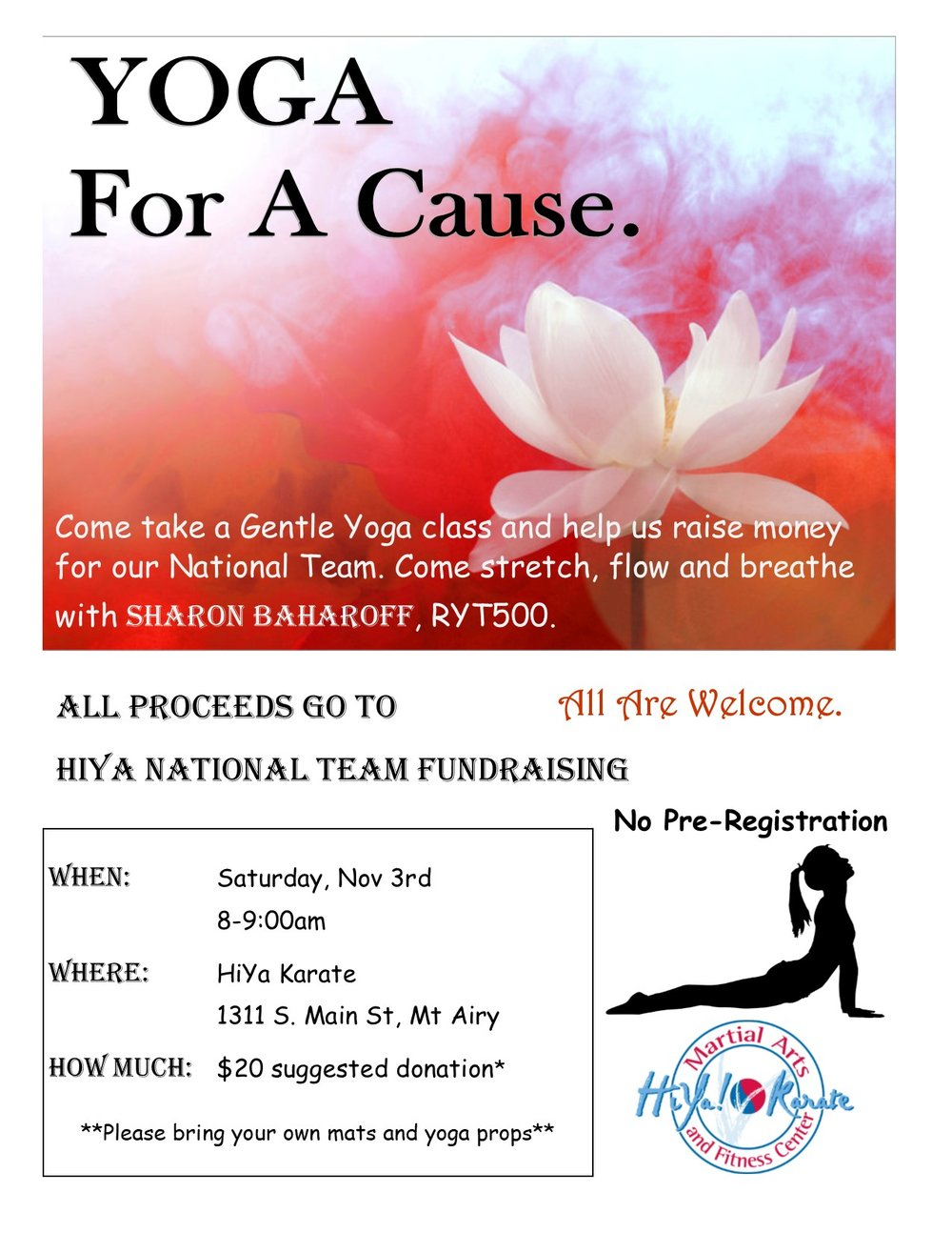 yoga fundraiser.jpg