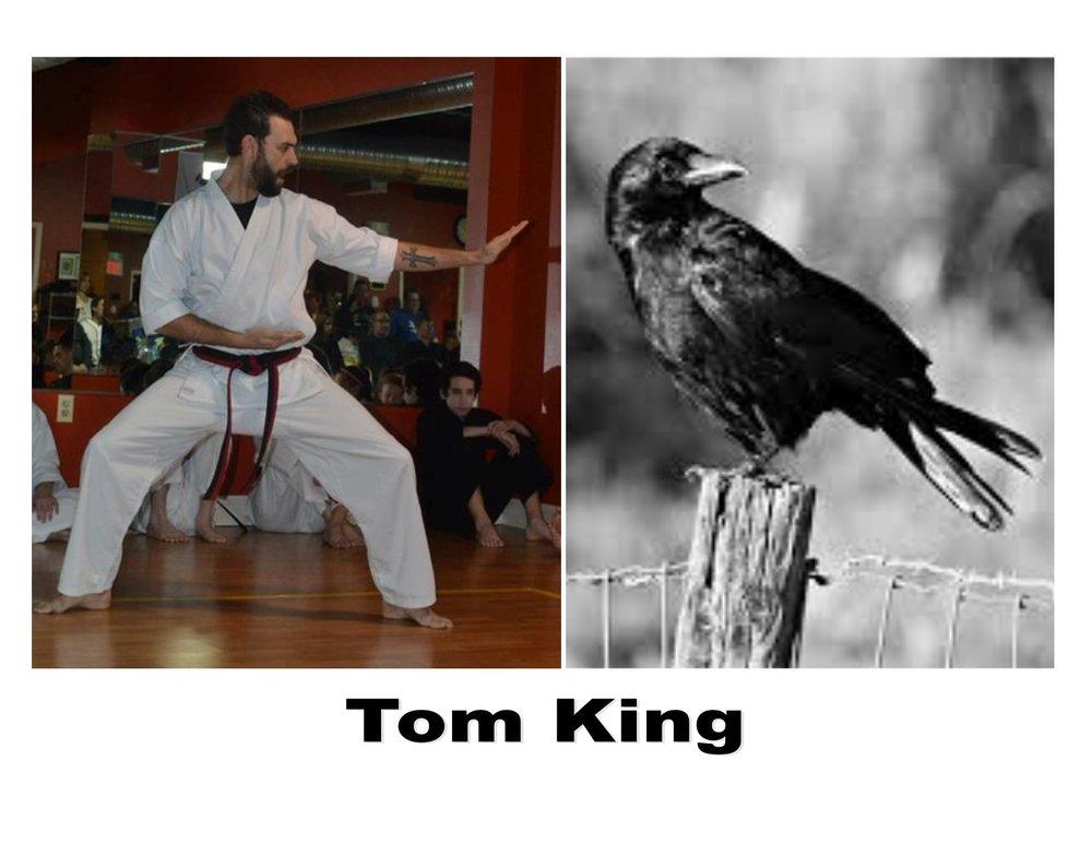 tom king spirit animal crane.jpg