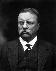 "Theodore ""T.R."" Roosevelt, Jr. (1858 – 1919) was the 26th President of the United States (1901–1909). He is noted for his exuberant personality, range of interests and achievements, and his leadership of the Progressive Movement, as well as his ""cowboy"" persona and robust masculinity. He was a leader of the Republican Party and founder of the first incarnation of the short-lived Progressive (""Bull Moose"") Party of 1912, which put Woodrow Wilson into office. Before becoming President, he held offices at the city, state, and federal levels."