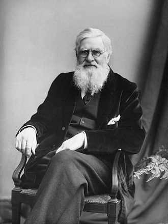 Alfred Russel Wallace (1823 – 1913) was a British naturalist, explorer, geographer, anthropologist, and biologist. He is best known for independently conceiving the theory of evolution through natural selection; his paper on the subject was jointly published with some of Charles Darwin's writings in 1858. This prompted Darwin to publish his own ideas in On the Origin of Species.