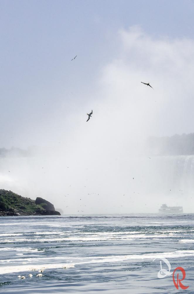 Canada-10.jpg