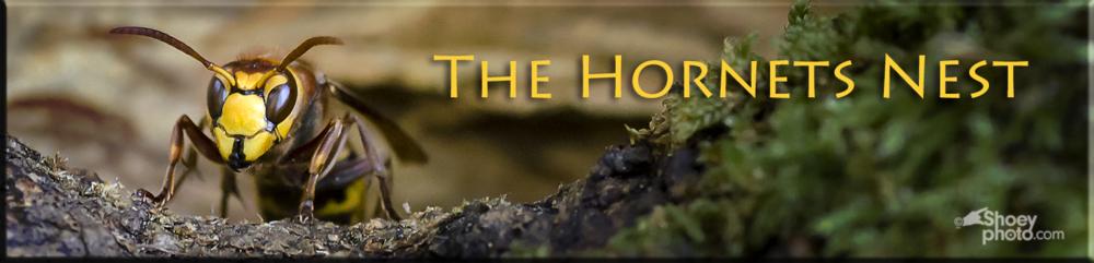 Hornet Banner