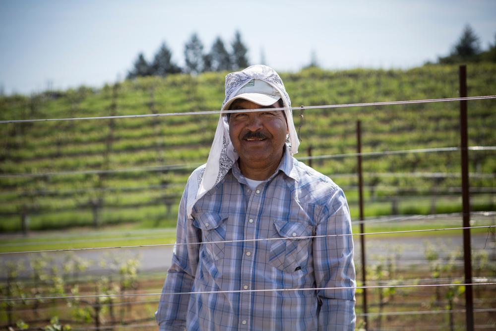 Juan Delgado, Vineyard Team Member