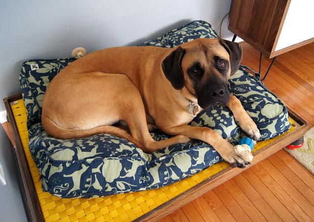 Truman+Bed.jpg