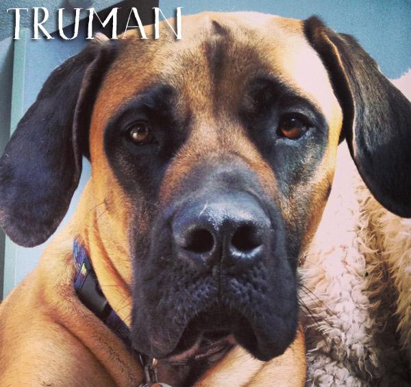 Truman2+copy.jpg