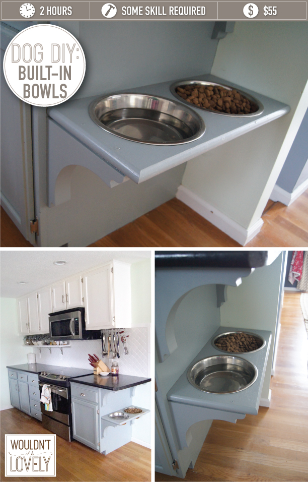 Where To Store Dog Food Small Kitchen