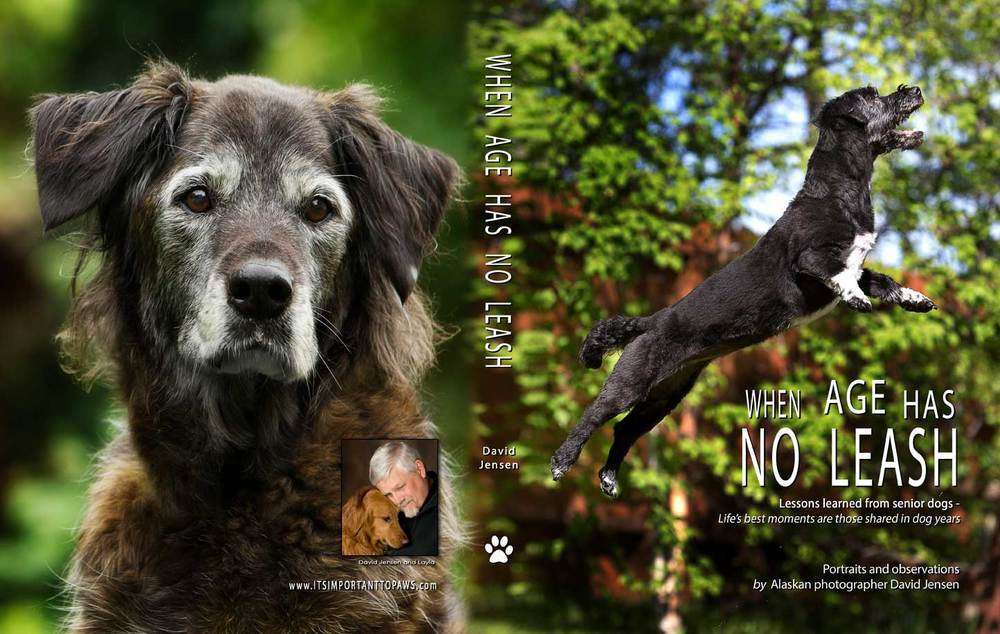 When Age Has No Leash.  160+ full-color pages of dog love.