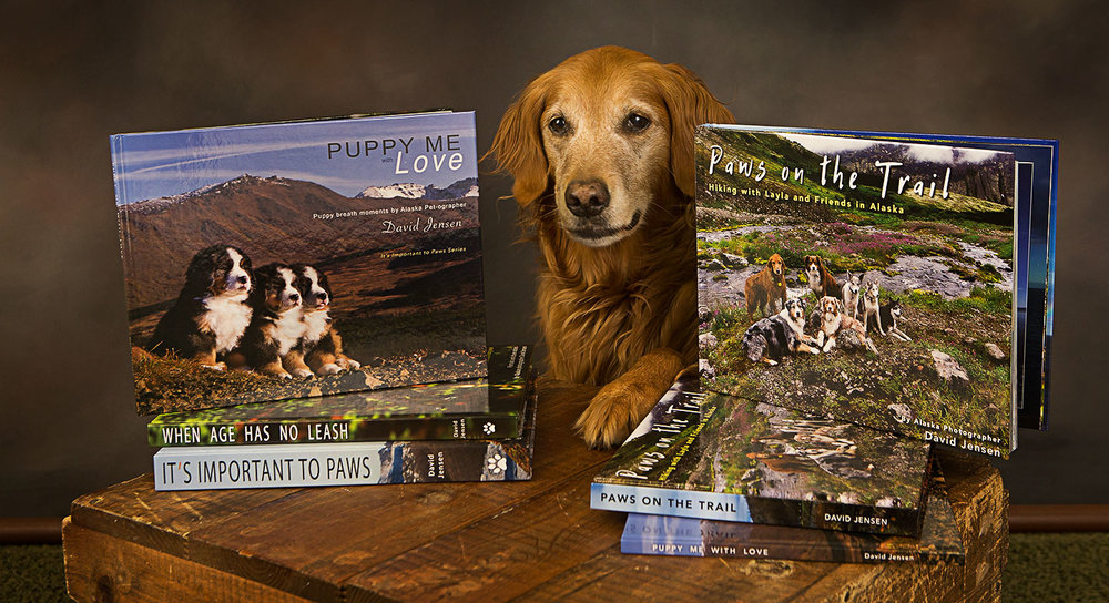 Layla offers a paw next to my two new books.  Taking orders now with delivery in early October.