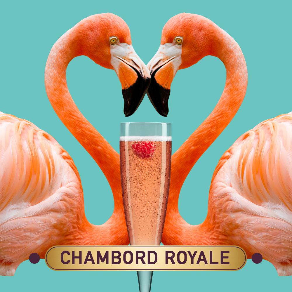SERVE_1_Flamingo_v5.jpg
