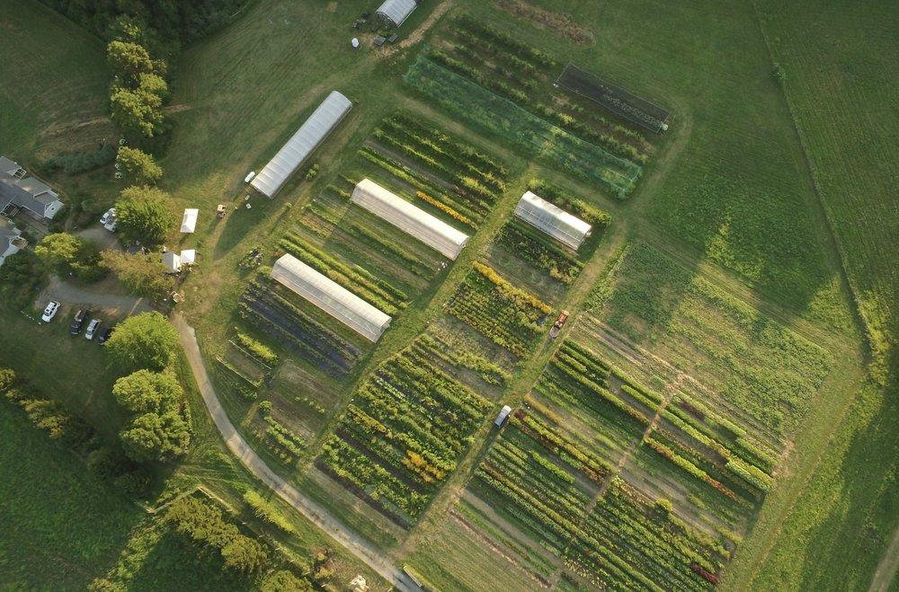FarmDroneShot.jpg