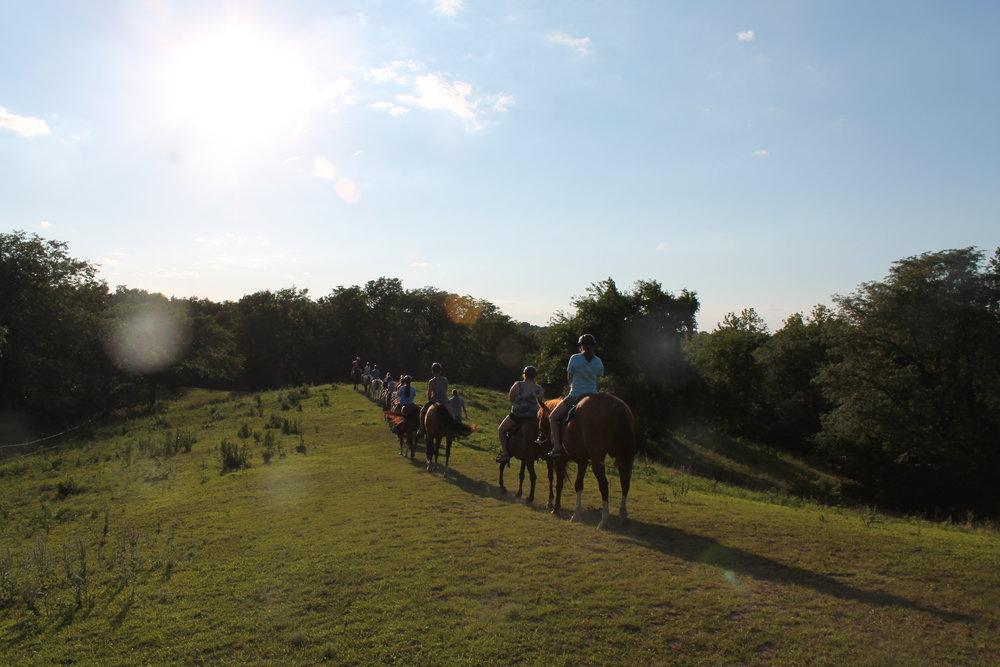 Copy of Activities: Horse Ride