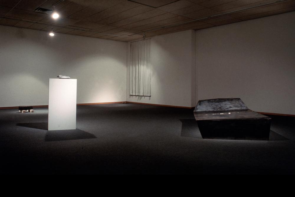 greyhound-series-installation-huebner-2.jpg