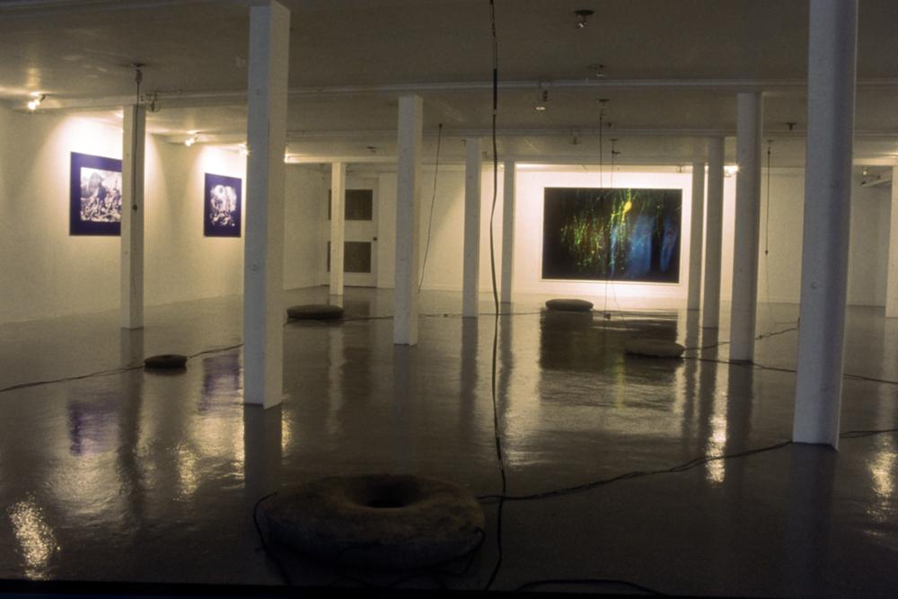 Installation - UBC Fine Arts Gallery, Vancouver Canada 1989