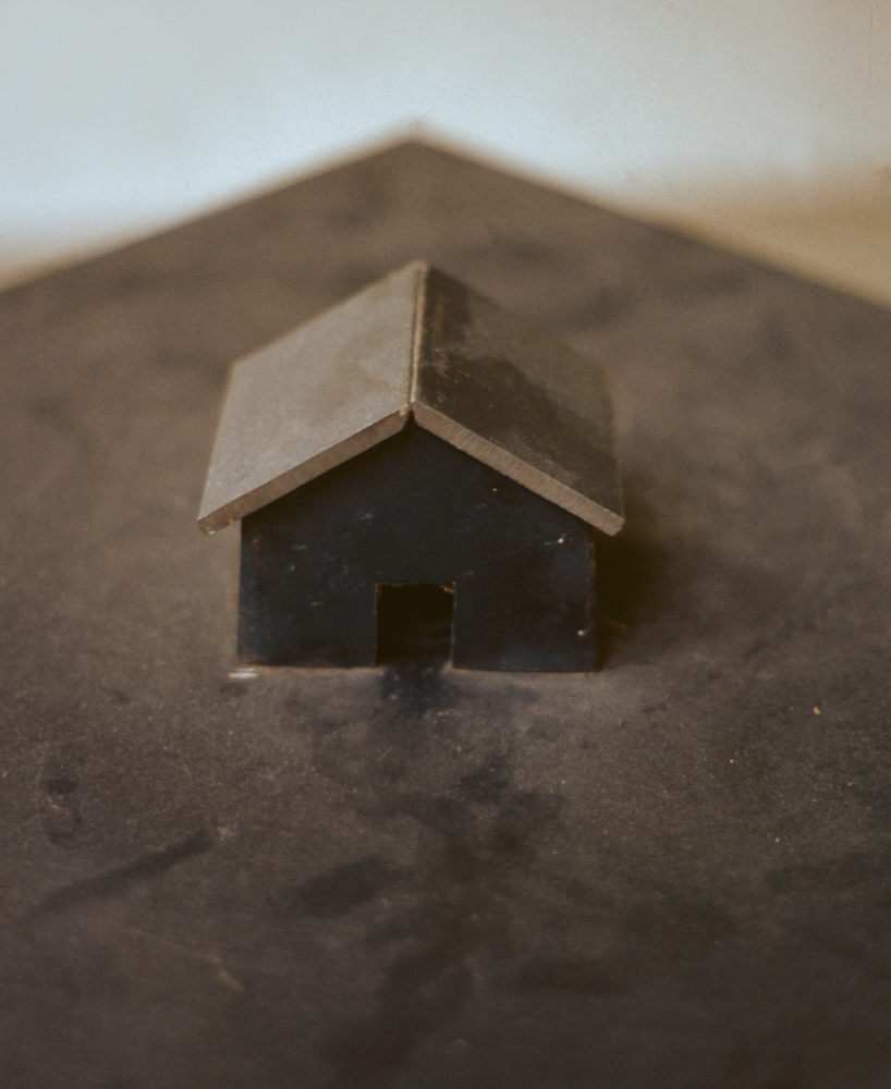 Dust House Vacuum