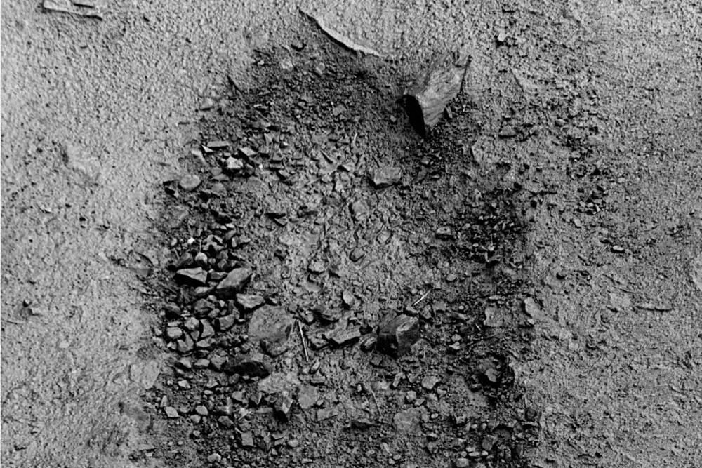 hope-pothole-greyhound-series-huebner-3.jpg