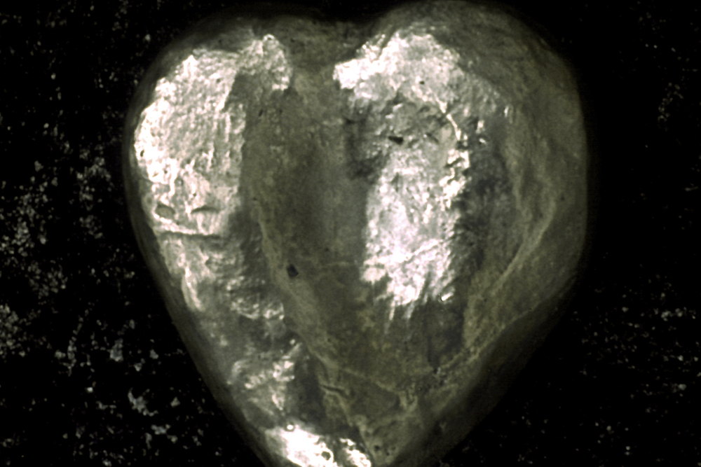 palm-heart-greyhound-huebner-5.jpg
