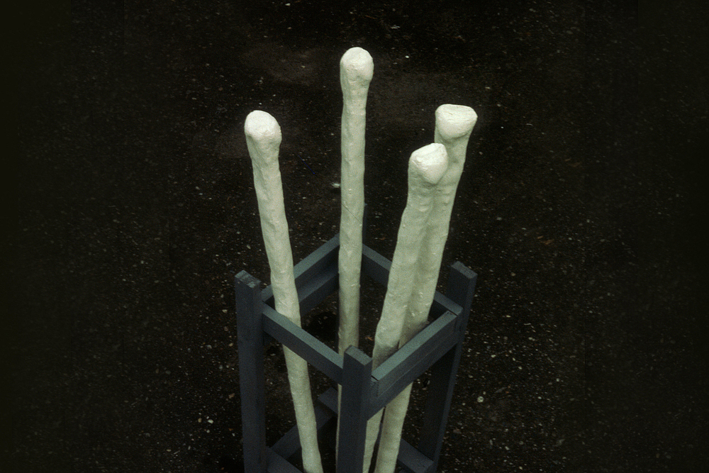 porcelain-white-canes-huebner-3.jpg
