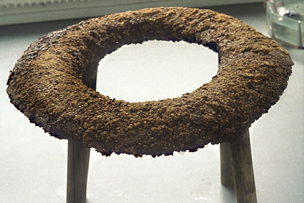 seeded-lifesaver-form-huebner-3.jpg