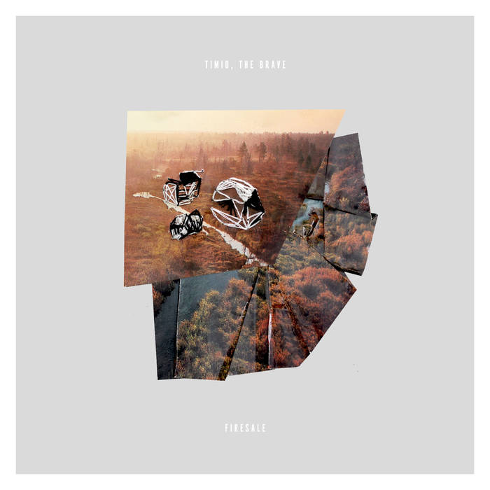 Timid, the Brave - Firesale