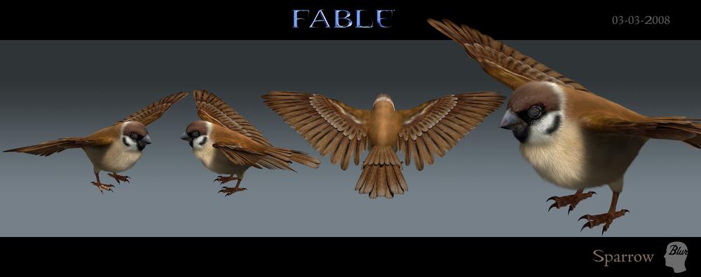 Sparrow_2008-03-03.jpg