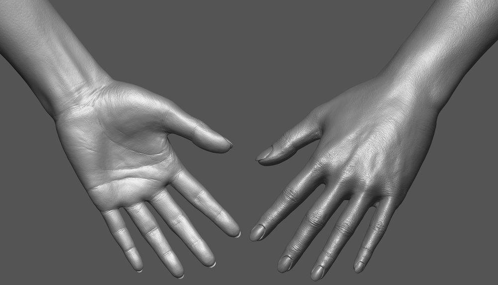 fem_hand-sheet.jpg