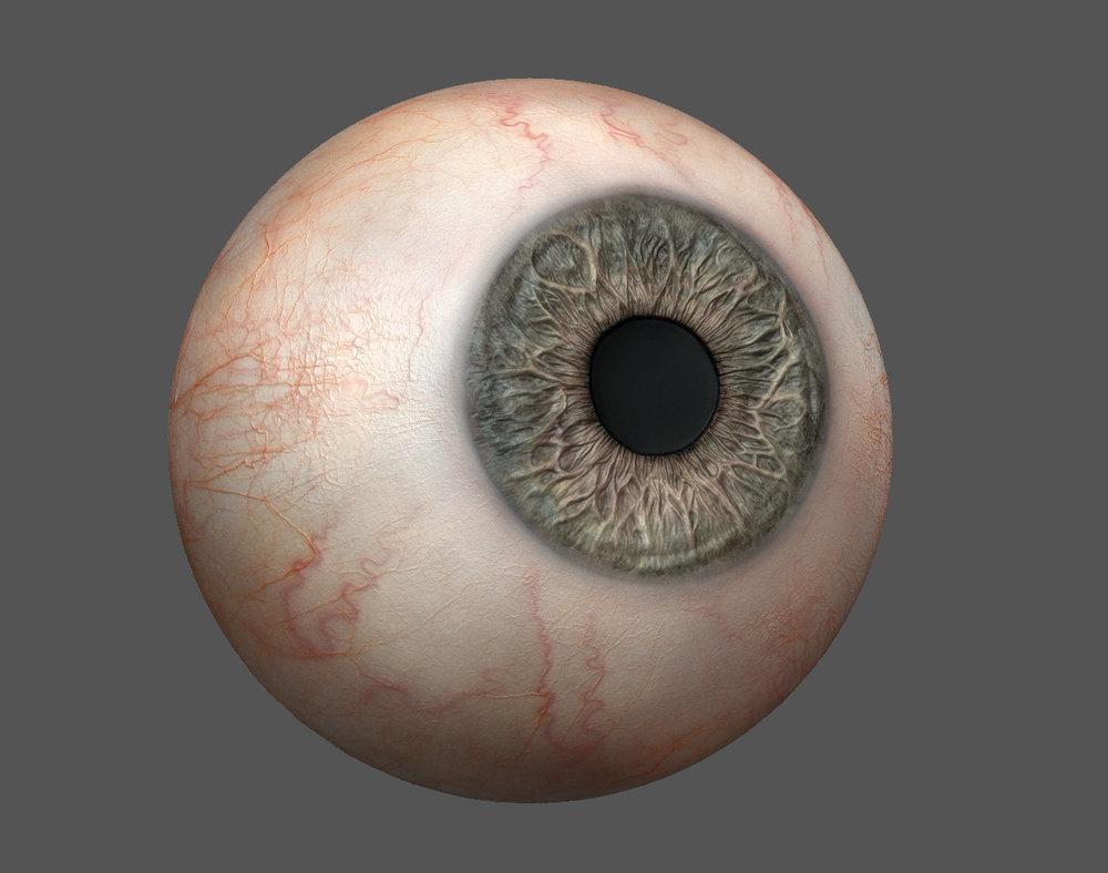 eye_zb3.jpg