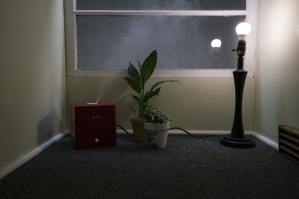 (to mist) interior