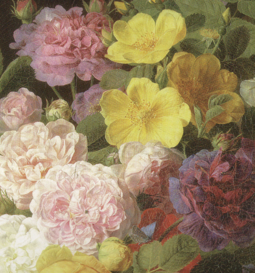 Roses, Peonies, and Other Flowers On a Ledge  (detail), Jan Frans Van Dael