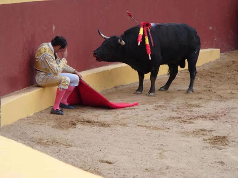 "santosha65 :     This incredible photo marks the end of Matador Torero Alvaro Munera's career. He collapsed in remorse mid-fight when he realized he was having to prompt this otherwise gentle beast to fight. He went on to become an avid opponent of bullfights. Even grievously wounded by picadors, he did not attack this man.   Torrero Munera is quoted as saying of this moment: ""And suddenly, I looked at the bull. He  had this innocence that all animals have in their eyes, and he looked at me with this pleading. It was like a cry for justice, deep down inside of me. I describe it as being like a prayer - because if one confesses, it is hoped, that one is forgiven. I felt like the worst shit on earth.""      #Respect."
