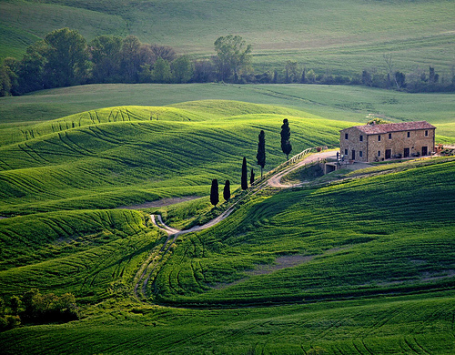 souls-of-my-shoes :     Tuscany, Italy (by  peo pea )