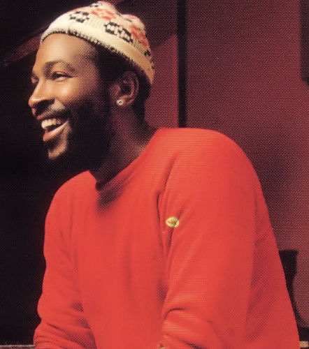 rootsnbluesfestival :      marvin gaye