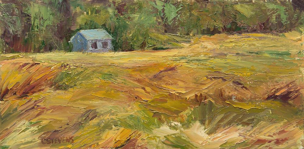 "Cindy Stevens' ""House on the Meadow"""