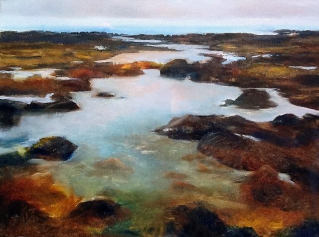 "Janine Robertson's ""Coastal View"""