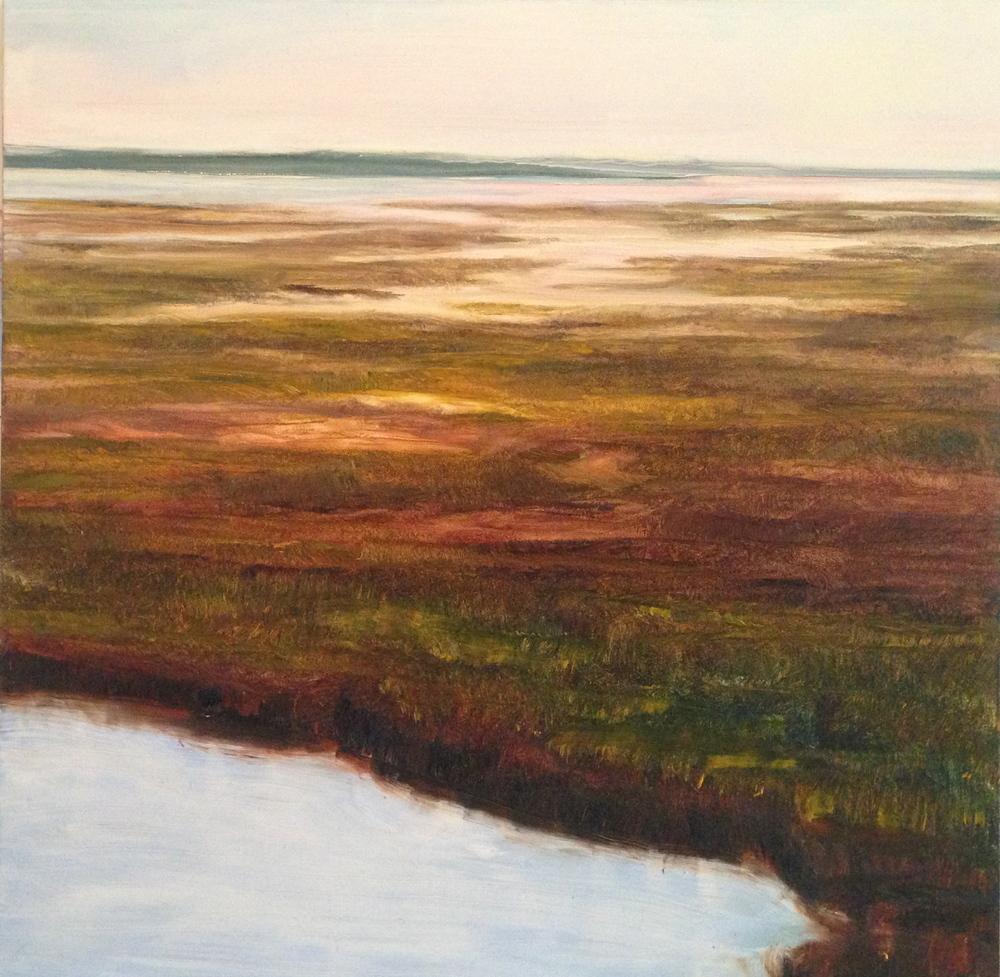 """Faye Mylen's """"Marsh"""""""