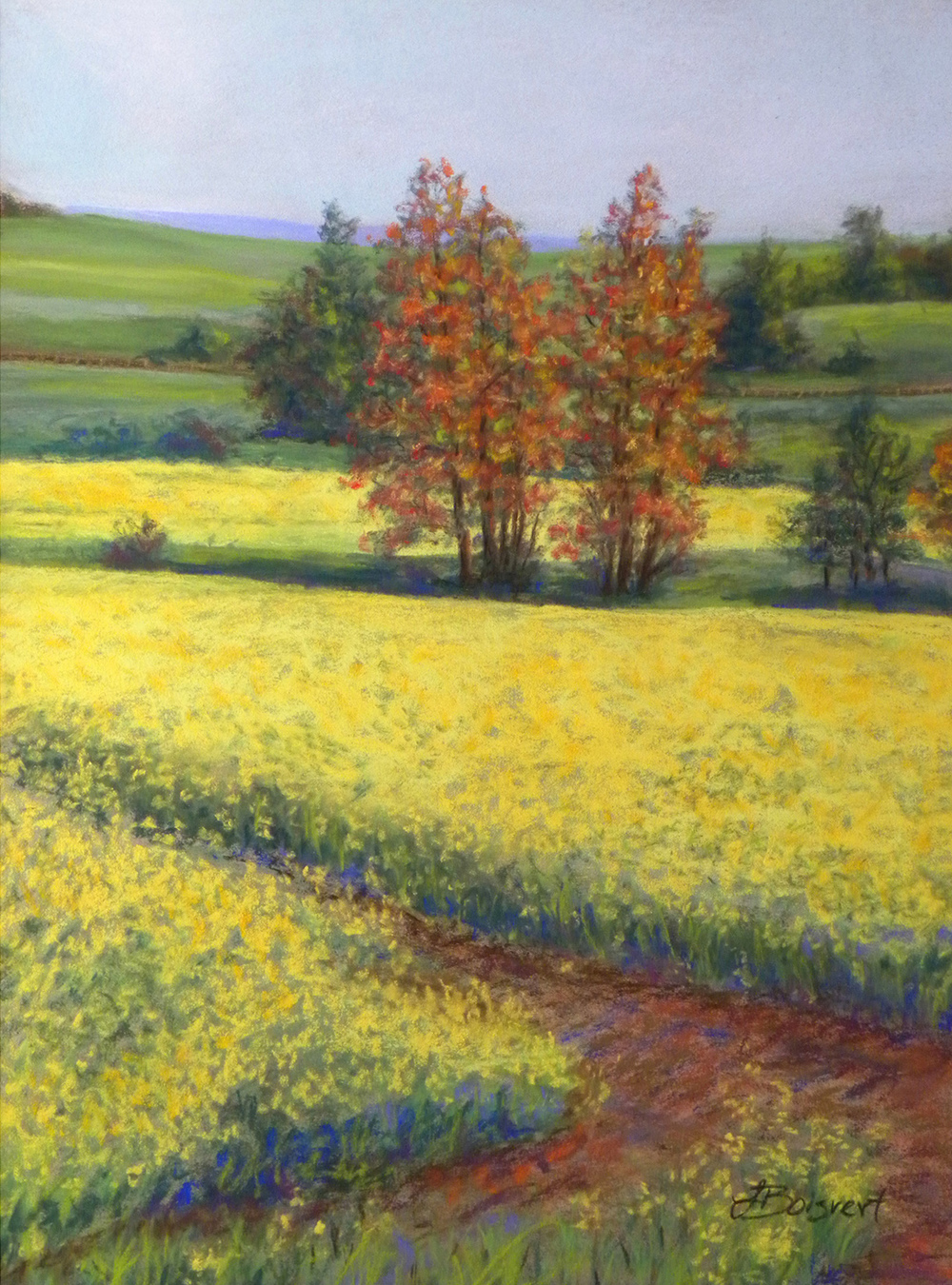"Linda Boisvert DeStefanis' ""Fields of Yellow"""