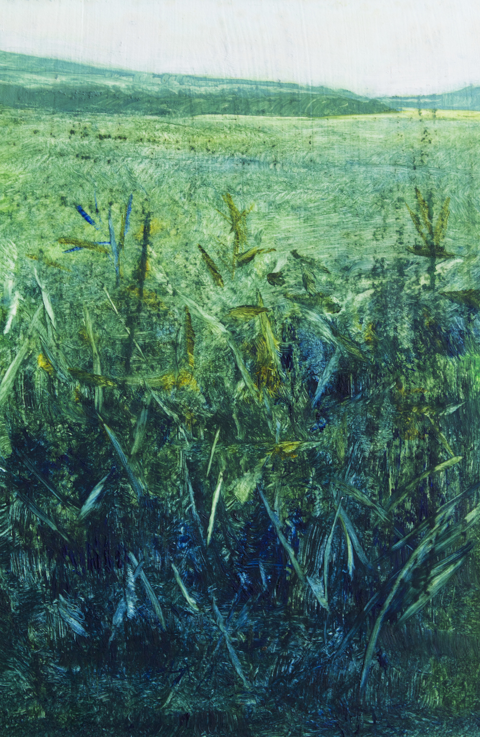 "Faye Mylen's ""Green Meadow"""