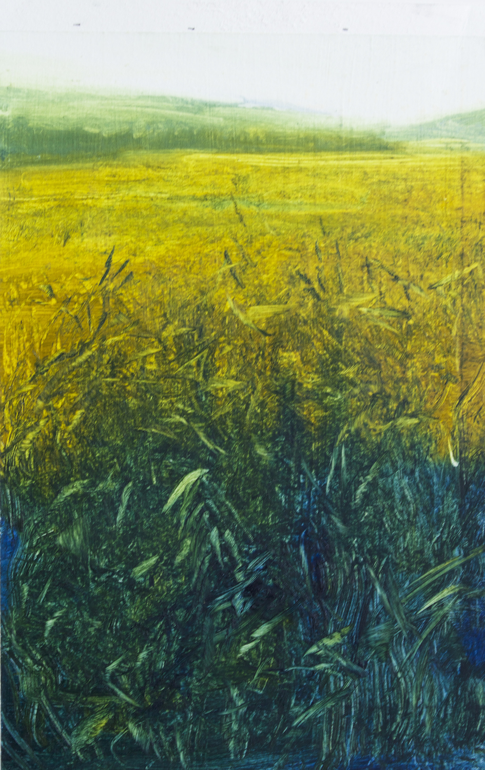 "Faye Mylen's ""Yellow Meadow"""