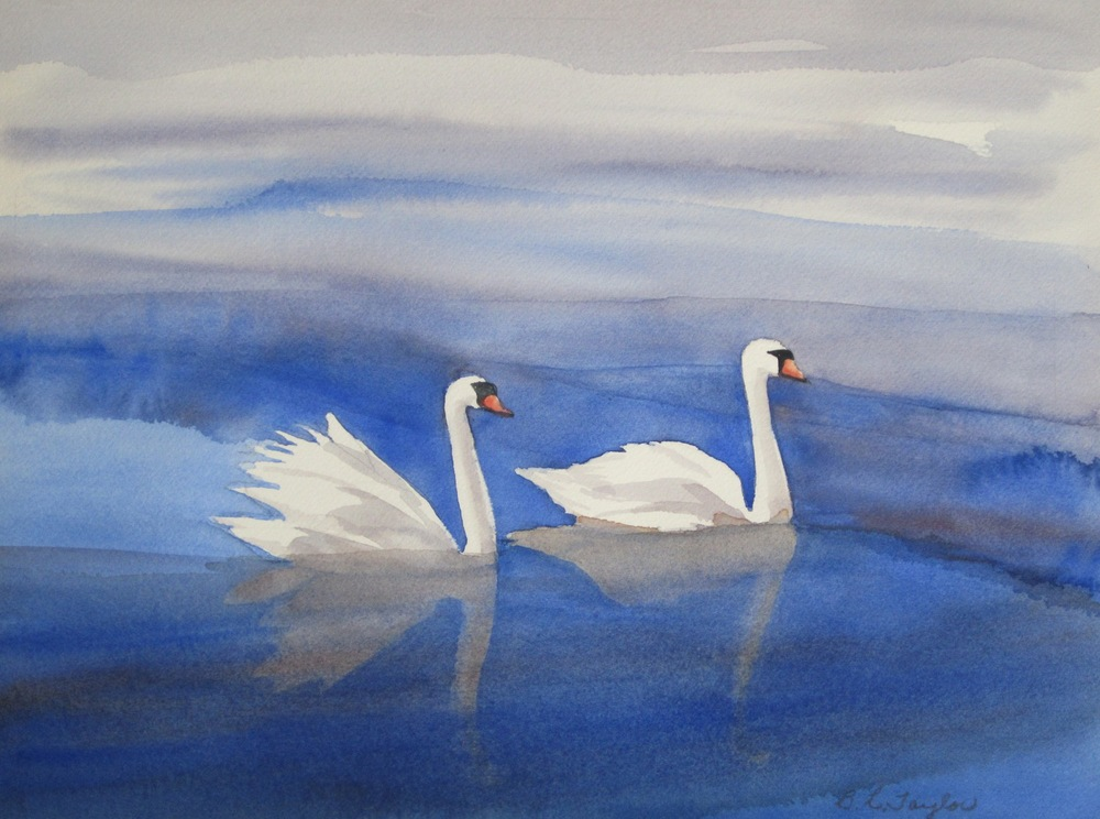 "BL Taylor's ""Swans in Mist"""