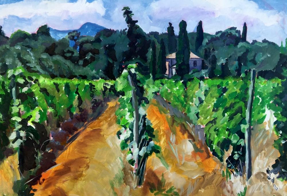 The Abbots Vineyard