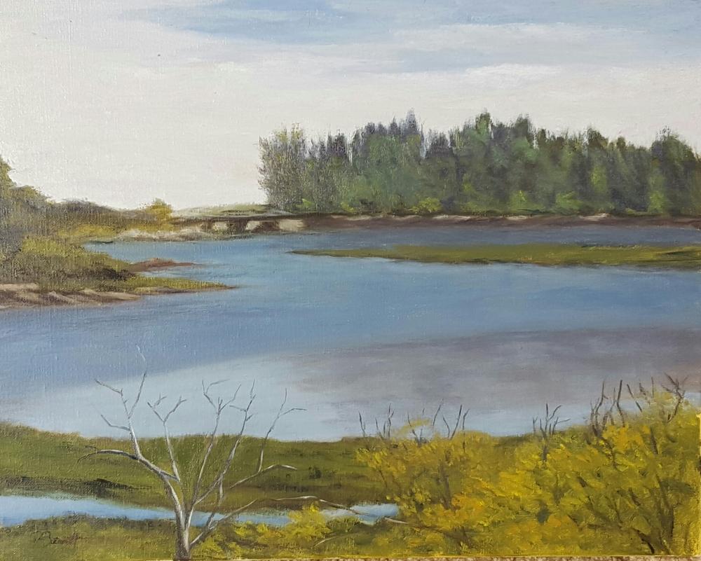 "Peter Barrett's ""Tidal Pool"""