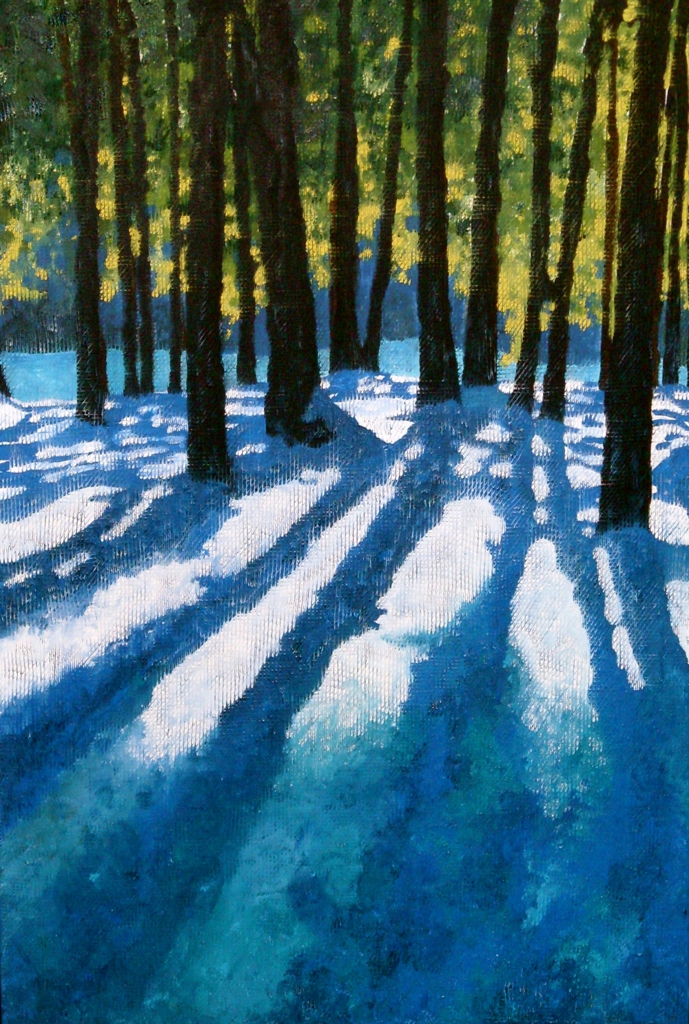 Winter Shadows II