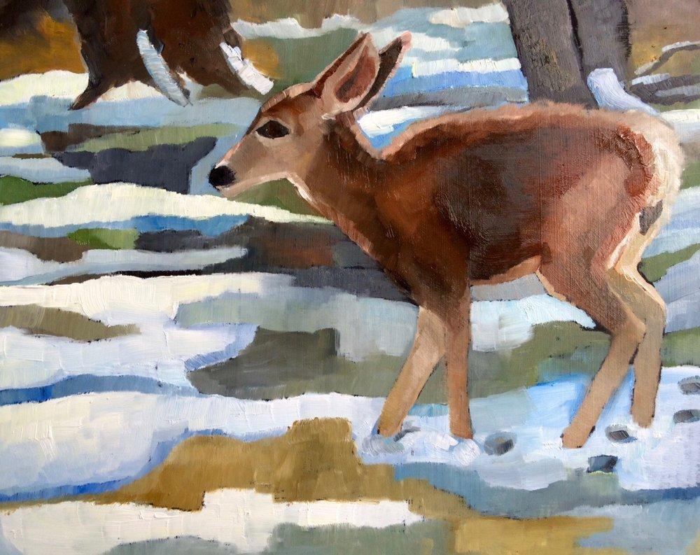 Young Deer in Snow
